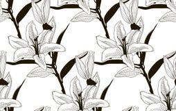 Wektorowy Czarny Bezszwowy wzór z Patroszonymi lelujami ilustracja wektor