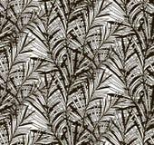 Wektorowy Czarny Bezszwowy wzór z Patroszonymi Paprociowymi liśćmi Obrazy Royalty Free