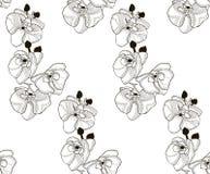 Wektorowy Czarny Bezszwowy wzór z Patroszonymi Storczykowymi kwiatami Fotografia Stock