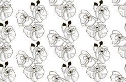 Wektorowy Czarny Bezszwowy wzór z Patroszonymi Storczykowymi kwiatami Zdjęcie Stock