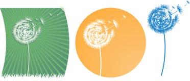 Wektorowy dandelion na wiatrze Obraz Royalty Free