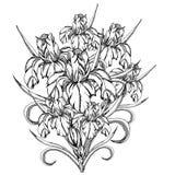 Wektorowy dekoracyjny irysowi kwiaty ilustracja wektor