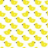 Wektorowy doodle wzór z kaczątkami Zdjęcie Royalty Free