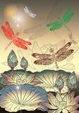 Wektorowy Dragonfly Fotografia Stock