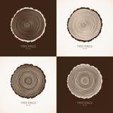 Wektorowy drzewnych pierścionków konceptualny tło Zdjęcie Stock