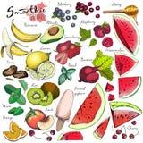 Wektorowy duży set owoc i warzywo dla detox smoothie Ręka rysujący grawerujący barwioni elementy ilustracja wektor