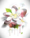 Wektorowy grunge 3d kwiatu tło ilustracji