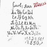 Wektorowy Grunge folujący Ręcznie pisany kędzierzawy kaligraficzny Obrazy Royalty Free