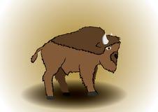 Wektorowy ilustracyjny żubr Zdjęcie Stock