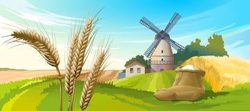 Wektorowy ilustracyjny wiejski lato krajobraz royalty ilustracja