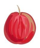 Wektorowy jabłko Zdjęcia Stock