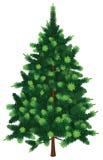 Wektorowy Jedlinowy drzewo royalty ilustracja