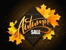 Wektorowy jesieni sprzedaży sztandar z ręki literowania i kolor żółty jesieni liśćmi klonowymi ilustracja wektor