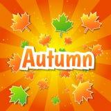 Wektorowy jesieni tło Fotografia Royalty Free