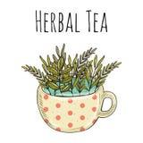 Wektorowy karciany projekt z ręka rysującą herbacianą ilustracją Dekoracyjny inking tło z rocznik herbatą royalty ilustracja
