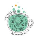 Wektorowy karciany projekt z ręka rysującą herbacianą ilustracją Dekoracyjny inking tło z rocznika herbacianym nakreśleniem royalty ilustracja