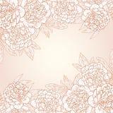 Wektorowy kartka z pozdrowieniami z peoniami. Zdjęcie Royalty Free