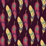 Wektorowy kolorowy bezszwowy etniczny wzór z dekoracyjnymi piórkami Zdjęcia Royalty Free