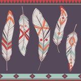 Wektorowy kolorowy set etniczni dekoracyjni piórka Zdjęcie Stock