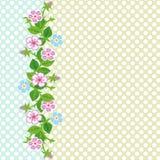 Wektorowy kolorowy tło z kwiatami Obraz Stock