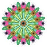 Wektorowy koloru monochromu mandala zdjęcia royalty free