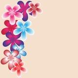 Wektorowy koloru wzór Fotografia Royalty Free
