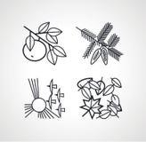 Wektorowy konturu rysunku naturalny set cztery sylwetki royalty ilustracja