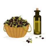Wektorowy kosz z dojrzałymi oliwkami zbiera i gleass butelka z oliwą z oliwek ilustracja wektor