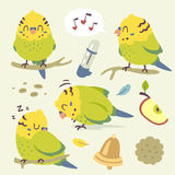 Wektorowy kreskówki budgie papugi set ilustracji