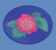 Wektorowy kwiat Zdjęcie Royalty Free