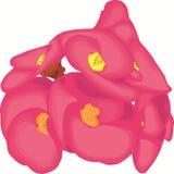 Wektorowy kwiat Obrazy Royalty Free