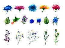 Wektorowy kwiecisty set Kolekcja z liśćmi Wiosna lub lato projekt dla zaproszenia, ślubu lub kartka z pozdrowieniami, Obrazy Stock