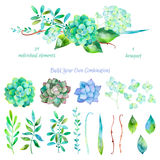 Wektorowy kwiecisty set Kolorowa kwiecista kolekcja z liśćmi i kwiatami