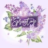 Wektorowy kwiecisty wiosny kartka z pozdrowieniami bez Fotografia Royalty Free