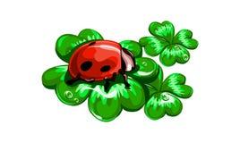 Wektorowy Ladybird Obraz Stock
