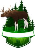 Wektorowy lasu emblemat z łosia amerykańskiego bykiem Fotografia Stock