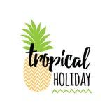 Wektorowy lato sztandar z ręka rysującym ananasem, pisze list projekta elementu ` Tropikalny wakacyjny ` Obrazy Stock