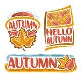 Wektorowy logo jesień deszcz Fotografia Stock