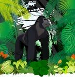 Wektorowy męski goryl w dżungla tropikalnym lesie deszczowym ilustracja wektor