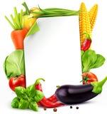 Wektorowy menu wzór z warzywo marchewkami, kapusta, basil, ilustracja wektor