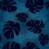 Wektorowy monstera liścia wzór Wektorowa Tropikalna lato ilustracja Moda rocznika lata tapetowy Hawajski tło Obraz Royalty Free