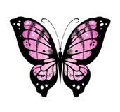 Wektorowy motyl Fotografia Stock