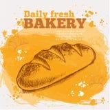 Wektorowy nakreślenie świeży chleb Obraz Stock