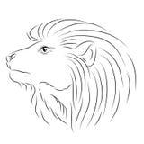 Wektorowy nakreślenie lew Obrazy Stock