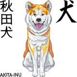 Wektorowy nakreślenie psa Akita Inu Japoński traken ono uśmiecha się royalty ilustracja