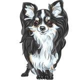 Wektorowy nakreślenie psa chihuahua trakenu ono uśmiecha się ilustracja wektor