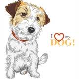 Wektorowy nakreślenie psa Jack Russell Terrier traken Zdjęcia Stock