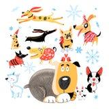 Wektorowy nowy rok ustawiający różni śmieszni psy royalty ilustracja