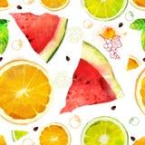 Wektorowy owocowy bezszwowy wzór Fotografia Stock