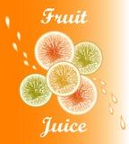 Wektorowy owocowy sok Obraz Royalty Free
